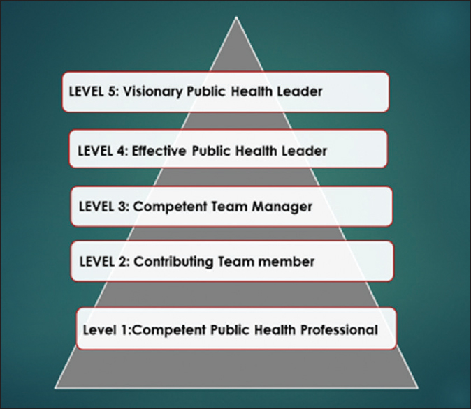 Figure 2:  Five levels of leadership in public health.